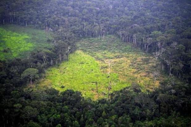 Risque de chaleurs extrêmes en 2100 au Brésil à cause de la déforestation