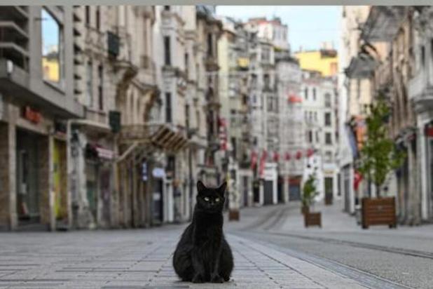 Erdogan kondigt vierdaags uitgaansverbod aan voor 31 grote steden