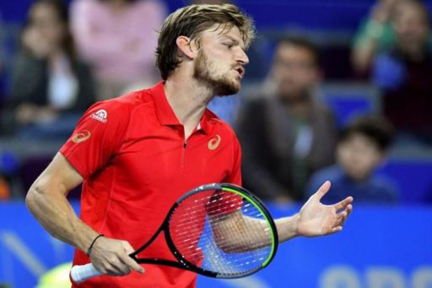 David Goffin sneuvelt in achtste finales ATP-toernooi Cincinnati