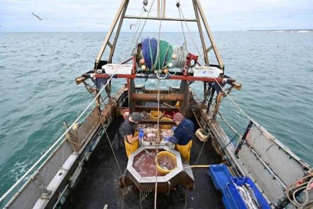 L'UE n'offre qu'une protection superficielle des milieux marins