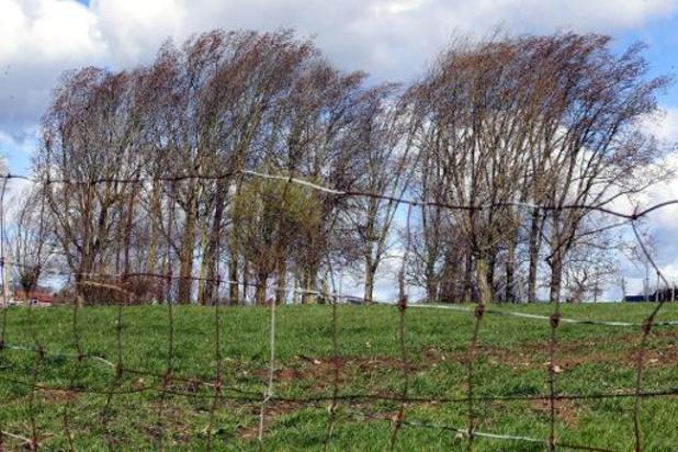 Mogelijk zware problemen door sneeuw en krachtige wind in Ardennen dit weekend
