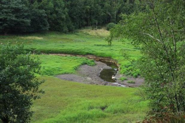 Grondwaterstanden stabiliseren