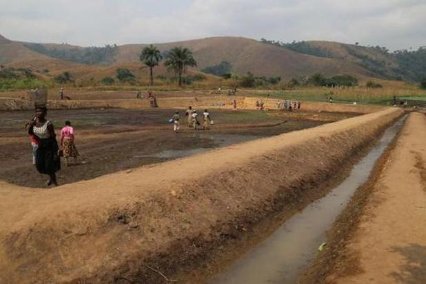 Grootschalige irrigatie kan extreme hitte door klimaatopwarming lokaal temperen