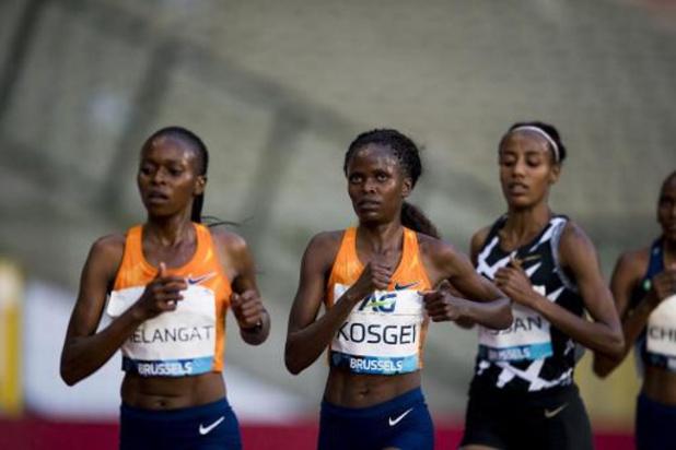 Memorial Van Damme: Sifan Hassan bat le record de l'heure féminin en 18,930 km
