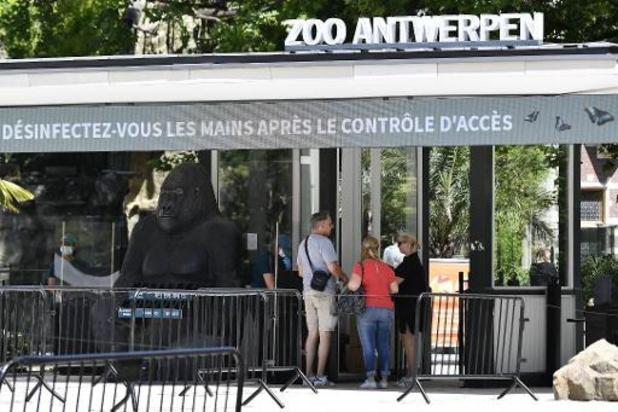 """Zoo Antwerpen lanceert """"Biobank"""" met stalen van duizenden dieren"""