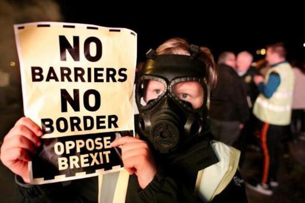 """""""Oplossing voor Noord-Ierland zet deur voor ontwijking van douanerechten open"""""""