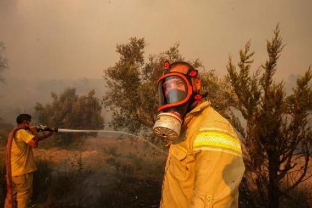 Evacuations dans l'île grecque d'Eubée, à nouveau frappée par le feu