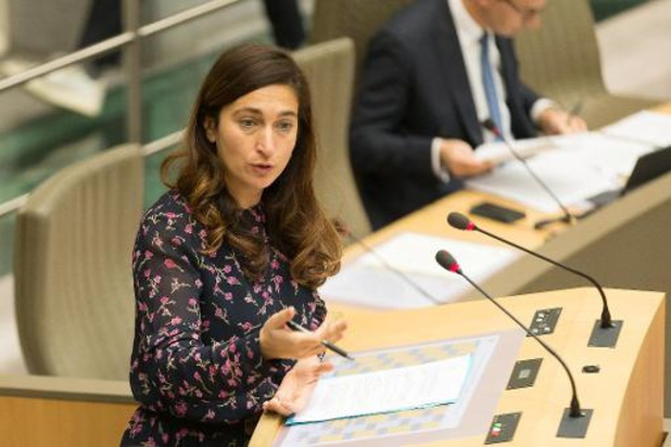 Demir wil kordatere bestraffing radicalisering