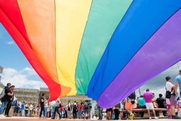 Droits LGBTI: l'UE refuse des subventions à des villes polonaises