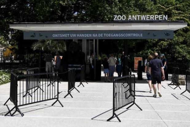 Zoo Antwerpen en Planckendael opnieuw open voor grote publiek