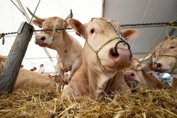 L'UE a échoué à réduire les émissions de CO2 dans l'agriculture, selon la Cour des comptes