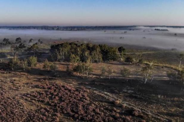 Kalmthoutse Heide stelt zich kandidaat als Nationaal Park