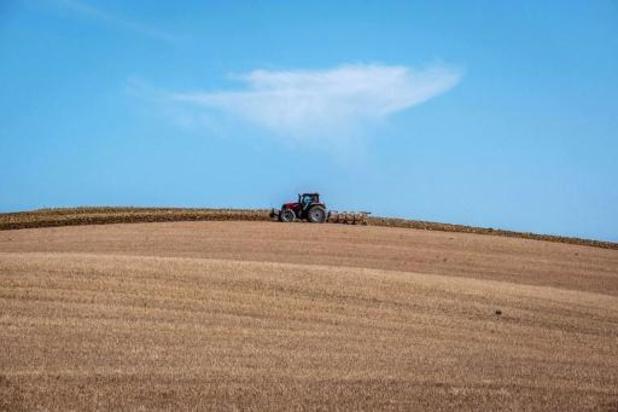 Les règles assouplies pour les travailleurs agricoles occasionnels