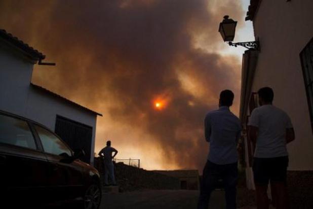 Natuurbranden leggen 10.000 hectare Spaans bos in de as