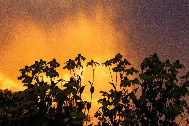 Une matinée ensoleillée avant le passage des orages