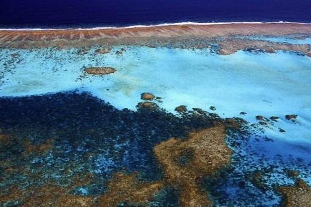 """Des techniques pour """"ralentir de 20 ans"""" la disparition de la Grande Barrière de corail"""