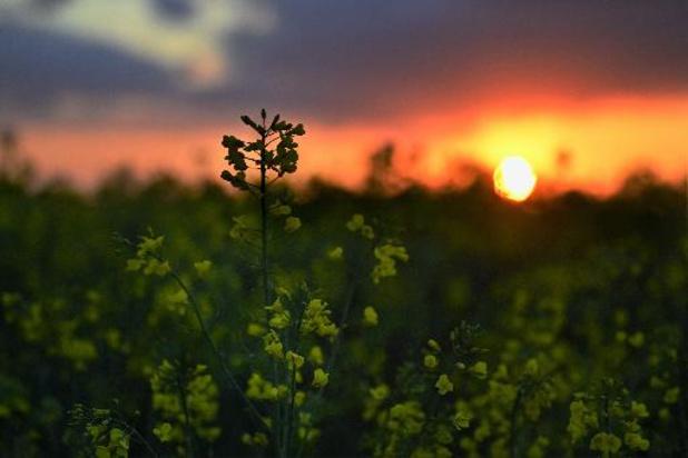 Météo - Une matinée lumineuse, une après-midi plus instable