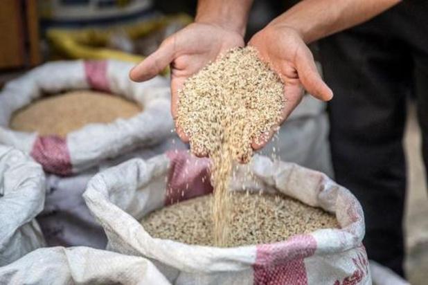 Honderden producten met sesamzaad uit handel gehaald in Nederland