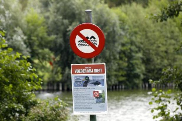 Zwemverbod in Gentse Blaarmeersen