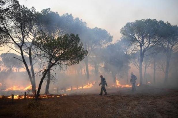 L'incendie qui a ravagé la Côte d'Azur officiellement déclaré éteint