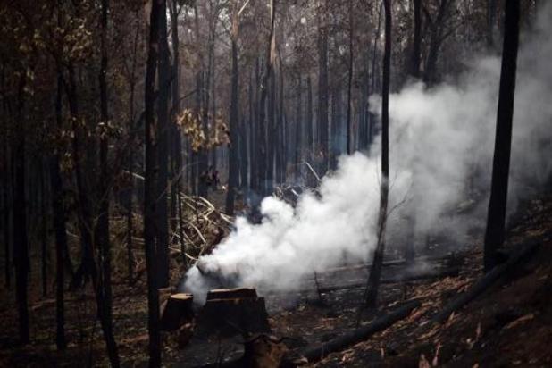"""""""Nous avons les épaules pour faire face aux incendies, mais toute aide est la bienvenue"""", affirme l'ambassadeur australien en Belgique"""