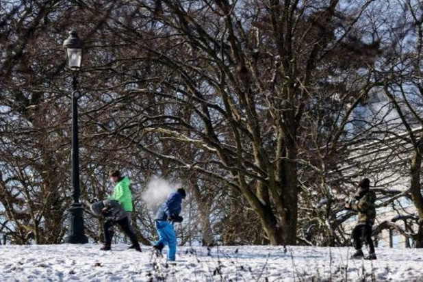 Als lokaal bestuur groen licht geeft kan geschaatst worden in gebieden van Natuur en Bos