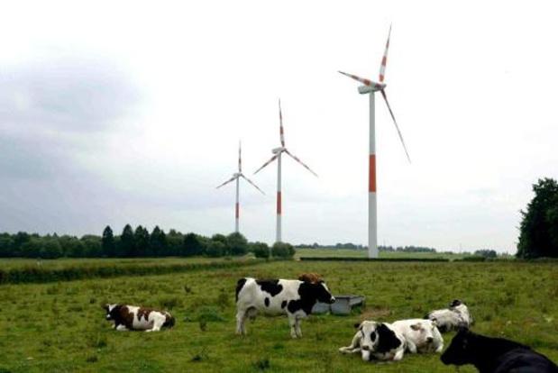 Recul de l'éolien wallon: un plan de relance de la Pax Eolienica est en route