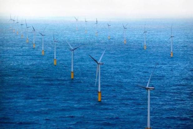 Windparken voor Belgische kust hebben negatieve én positieve milieu-impact