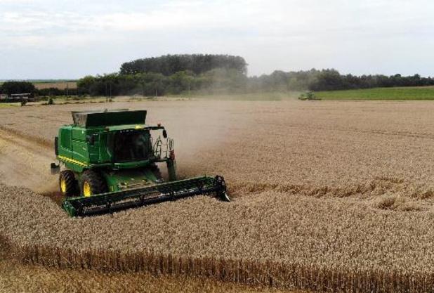 Hoogste stijging van prijzen voor landbouwgrond in vijf jaar
