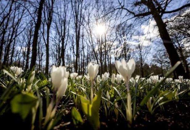 Ruim 10.000 testafspraken in Nederland voor uitstappen komende drie dagen