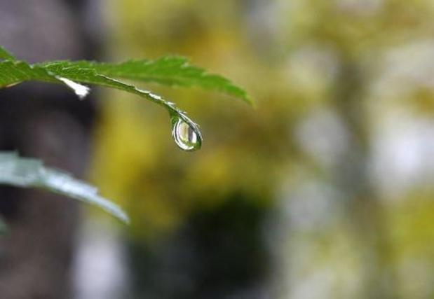 La pluie fera son retour vendredi