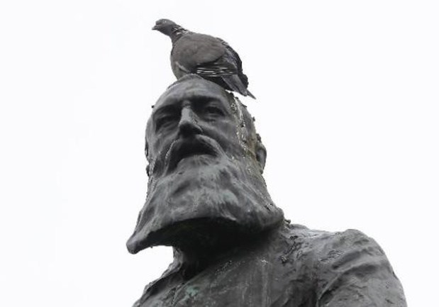 Hasselt en Sint-Truiden behouden Leopold II-standbeeld