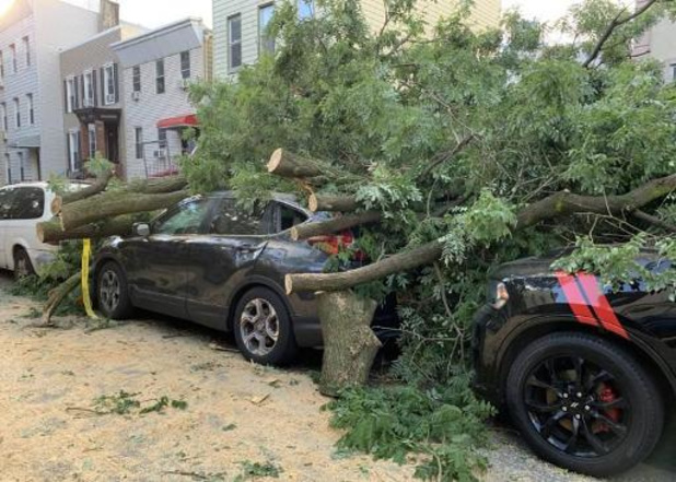Zeker vier doden en miljoenen huizen zonder stroom in VS door tropische storm Isaias