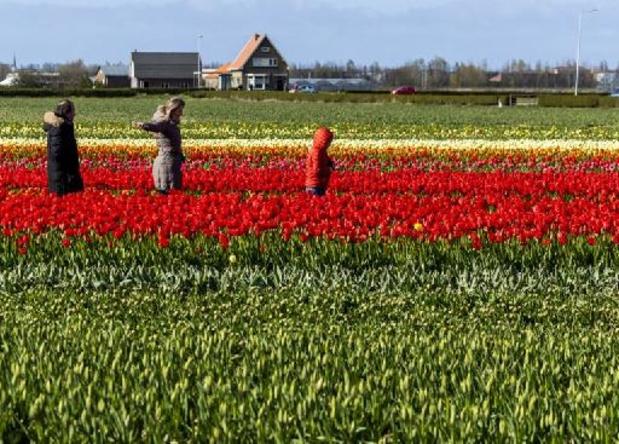 Nederlandse toeristische sector pleit voor drielanden-reisbubbel met België