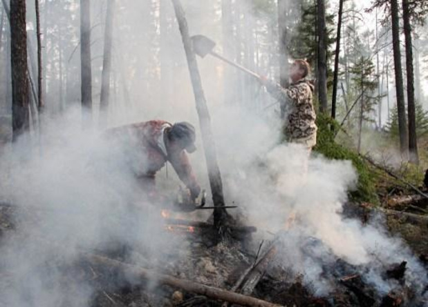 Bosbranden in Siberië geblust