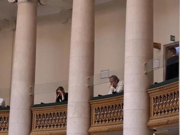 Van Dormael, Geluck et Alice on the Roof à la Chambre pour soutenir la loi sur les artistes