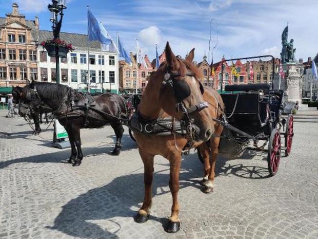 Brugge ziet aantal toeristen halveren in 2020 door coronacrisis