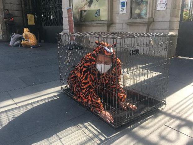 Dierenrechtenactivisten blokkeren ingang Zoo van Antwerpen