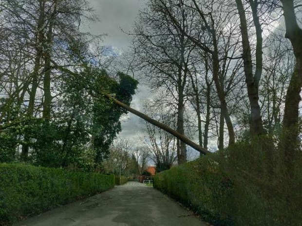 Noodweer - Veertigtal interventies in provincie Namen