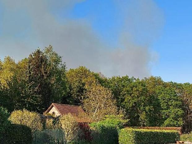Omvangrijke natuurbrand in domein De Liereman in Oud-Turnhout