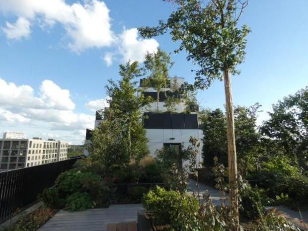 """Italiaanse toparchitect Boeri stelt """"Palazzo Verde"""" voor in Antwerpen"""