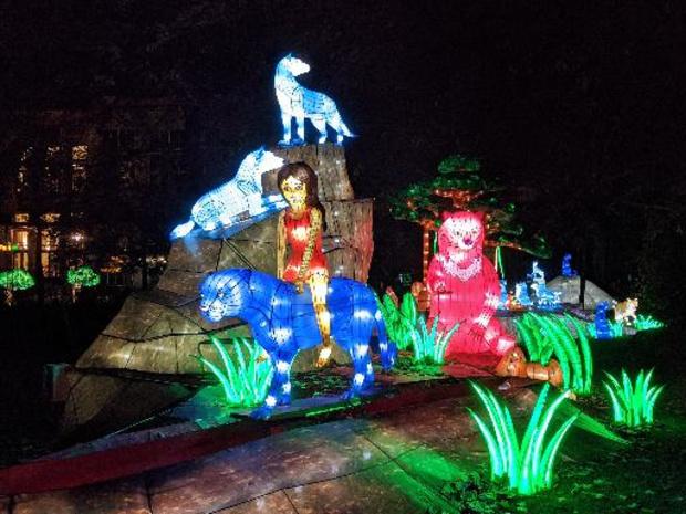 Jungle Book Light Festival van start in Antwerpse Zoo
