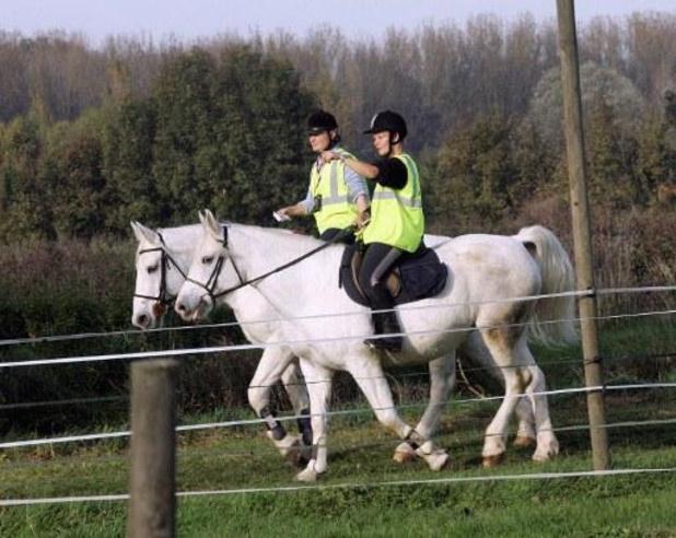 Les sorties à cheval pour le bien-être de l'animal sont autorisées, DéFI se réjouit