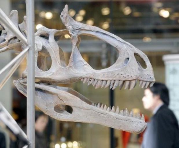 Une nouvelle espèce de dinosaure décrite en Chine