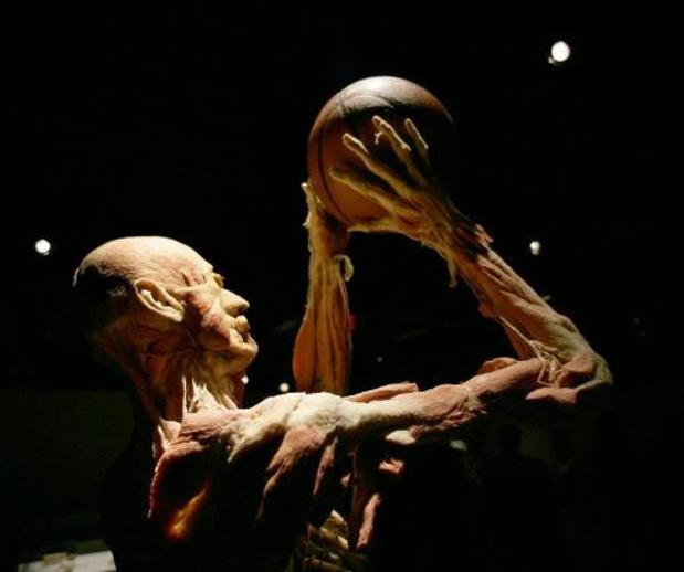 Sportpaleis mag nog eens deuren openen voor artistieke anatomie-expo