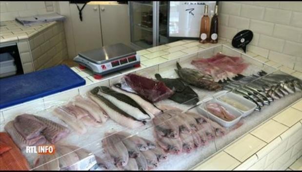 Les prix des poissons en baisse en raison de la fermeture de l'horeca