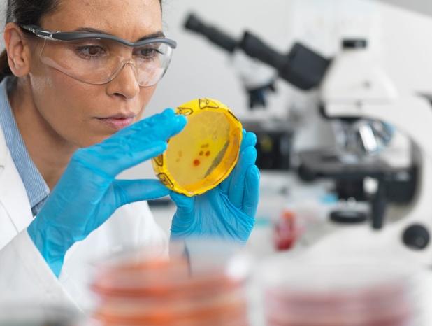 Farmaceutische sector topper in de kennisindustrie