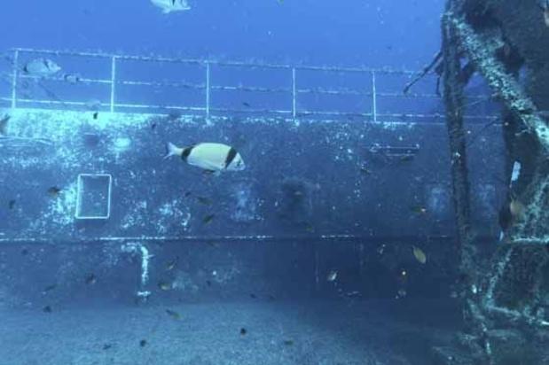Epaves retrouvées longtemps après leur naufrage: des précédents