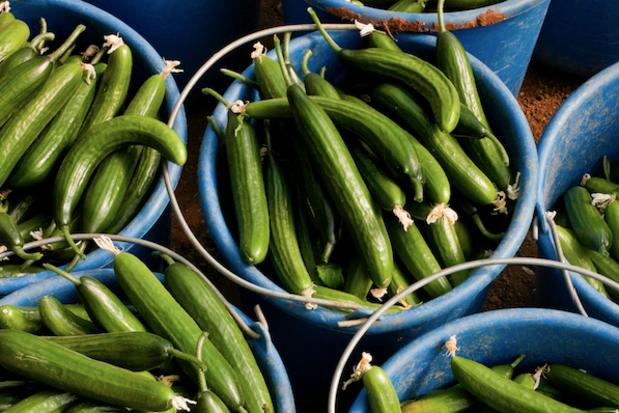 Zomerdrankjes kunnen 3.500 ton komkommers van de afvalhoop redden