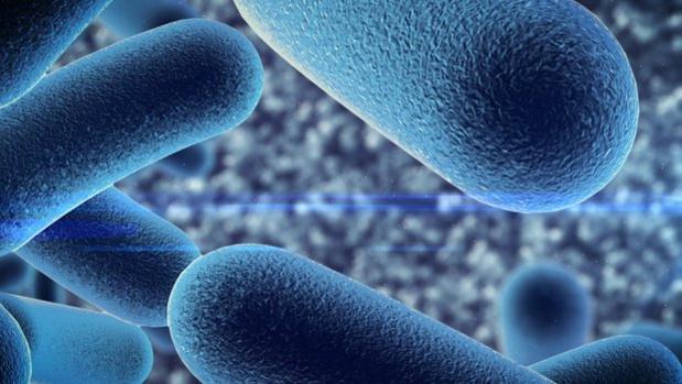 Les probiotiques peuvent réduire les troubles gastriques inexpliqués